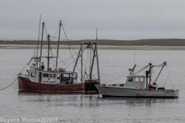Boats_8