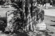 CemetaryA_Black_White_19