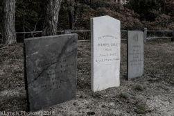 CemeteryB_BlackWhite_13