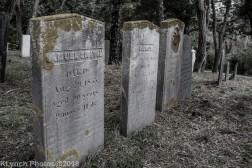 CemeteryB_BlackWhite_16