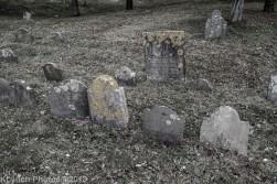 CemeteryC_BlackWhite_17
