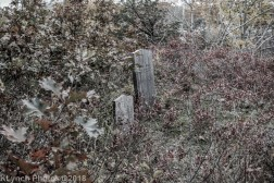 CemeteryD_BlackWhite_15
