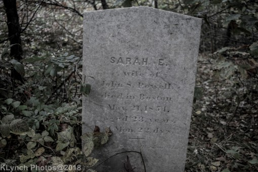 CemeteryD_BlackWhite_22