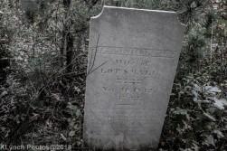 CemeteryD_BlackWhite_24