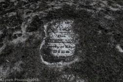 CemeteryD_BlackWhite_3