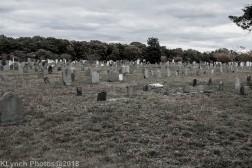 CemeteryE_BlackWhite_4