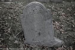Graves_BlackWhite_15