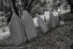 Graves_BlackWhite_16