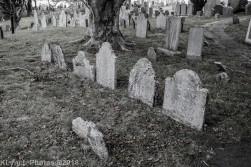 Graves_BlackWhite_17