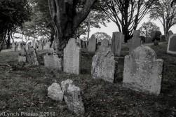 Graves_BlackWhite_18