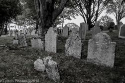 Graves_BlackWhite_18