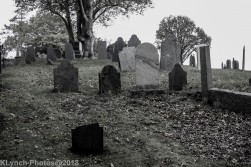 Graves_BlackWhite_2