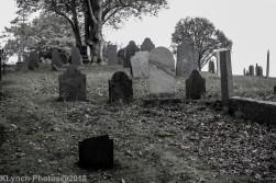 Graves_BlackWhite_2