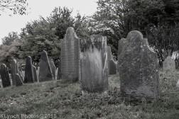 Graves_BlackWhite_25