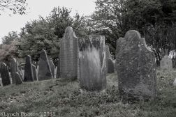 Graves_BlackWhite_25