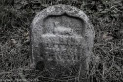 Graves_BlackWhite_27