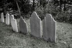 Graves_BlackWhite_29