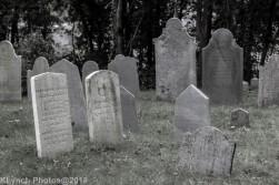 Graves_BlackWhite_40