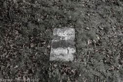 Graves_BlackWhite_58