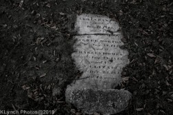 Graves_BlackWhite_7