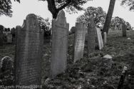 Graves_BlackWhite_82