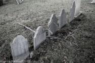 Graves_BlackWhite_83