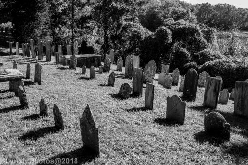 Graves_BW_11
