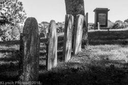 Graves_BW_6