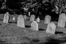 Graves_BW_7