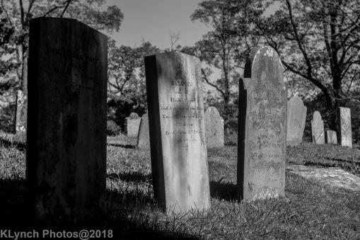Graves_BW_8