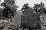 Cemetery_Barnstable_Black_White_28