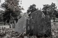 Cemetery_Barnstable_Black_White_28