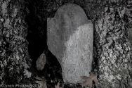 Cemetery_Barnstable_Black_White_31