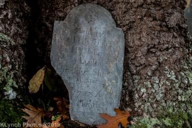 Cemetery_Barnstable_Color_24
