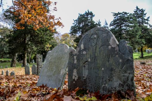 Cemetery_Barnstable_Color_28