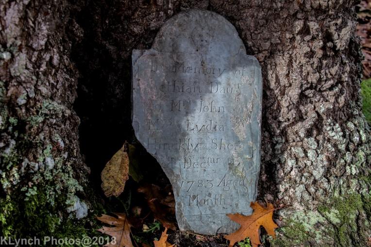 Cemetery_Barnstable_Color_31