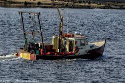 Boats_5