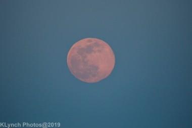 Moon_41