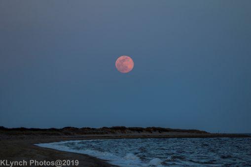 Moon_42