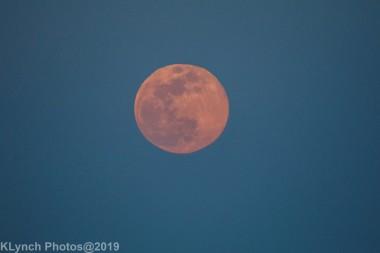 Moon_51
