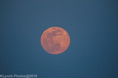 Moon_52