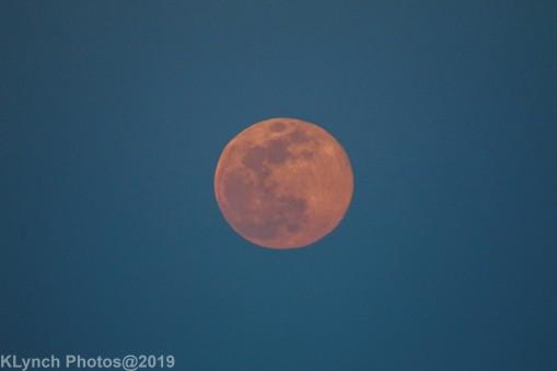 Moon_53