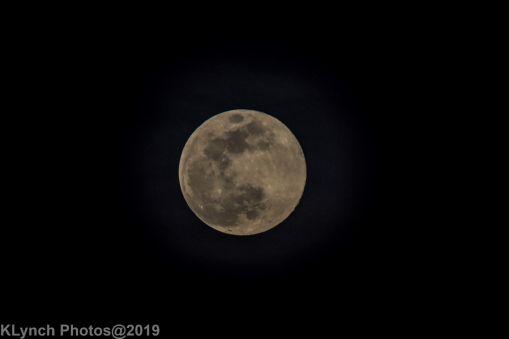 Moon_65