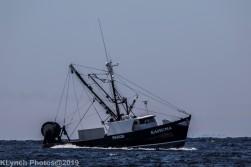 Boat_3