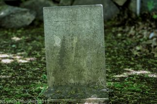Graves_1