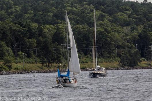 Boats_6