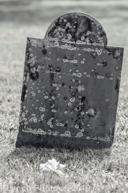 Cemetery BlackWhite_17