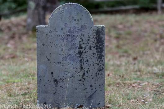 Cemetery Color_3