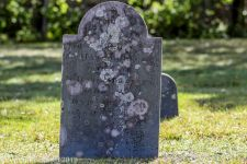 Cemetery Color_5