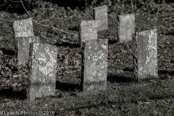 Cemetery_BlackandWhite_1